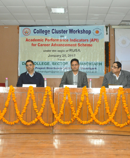 College Cluster workshop on Academic Performance Indicators held at DAV-10, Chandigarh